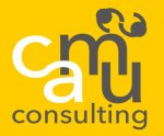 camü consulting